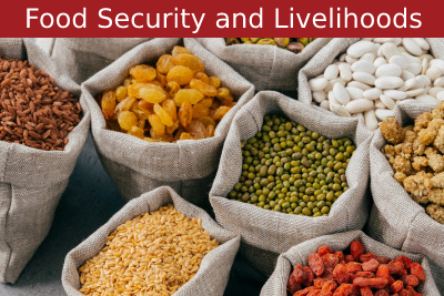 Food Security and Livelihoods Courses