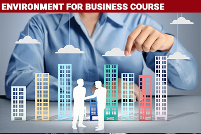 Environment for Business Course