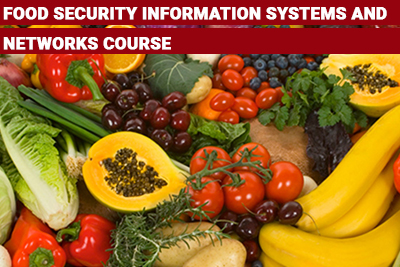 Food Security Information Systems and Networks Course