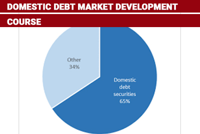 Domestic Debt Market Development Course