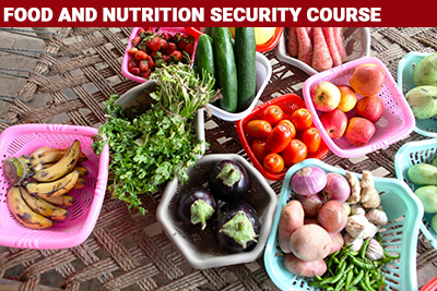 Food and Nutrition Security Course