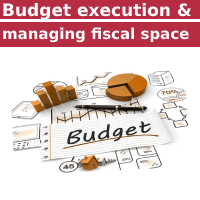 Budget Execution and Managing Fiscal Space Course
