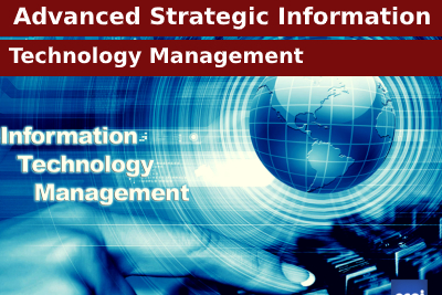 Advanced Strategic Information Technology Management Course