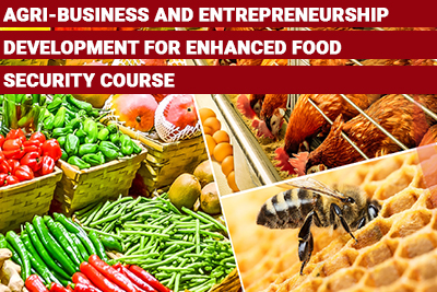 Agri-business and Entrepreneurship Development for Enhanced Food Security Course