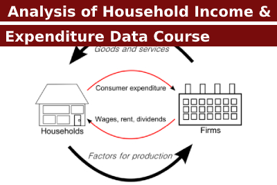 Analysis of Household Income and Expenditure Data Course