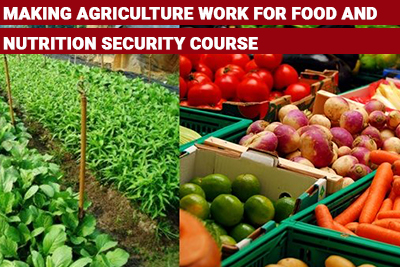 Making Agriculture Work for Food and Nutrition Security Course
