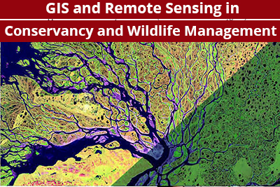 GIS and Remote Sensing in Conservancy and Wildlife Management Course